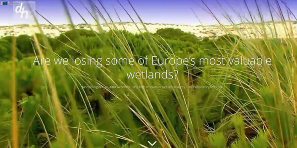 Feature image news European wetlands