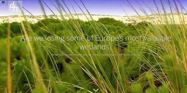 Feature image news European wetlands